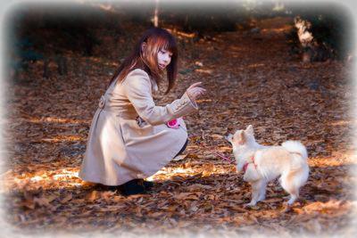 埼玉県で公園をペットと散歩