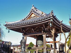 埼玉県さいたま市浦和区のペット火葬・葬儀