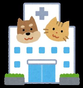 ペットの動物病院選び