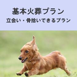 埼玉県のペット葬儀なら優眠の基本火葬プラン