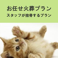 埼玉県のペット葬儀なら優眠のお任せ火葬プラン